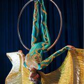Воздушная гимнастка номер Птица