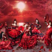 Шоу - балет № 9
