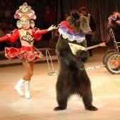 Дрессированный медведь № 2
