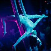 Воздушная гимнастка на полотнах и корд-де-парели.