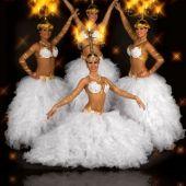 Ансамбль восточных танцев
