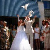 Запуск голубей на свадьбах и мероприятиях